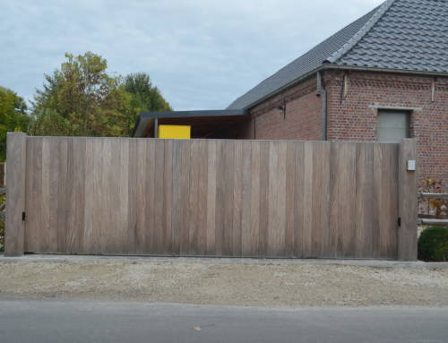 Hout 41